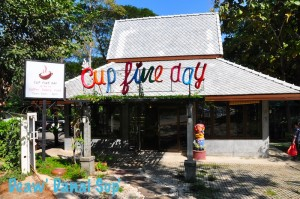 Cup Fine Day 001
