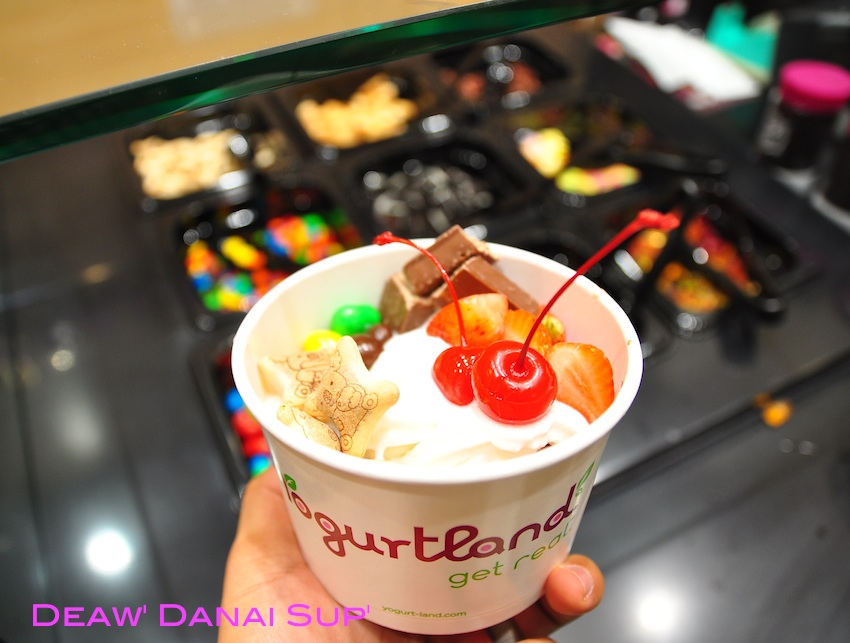 Yogurt land 014