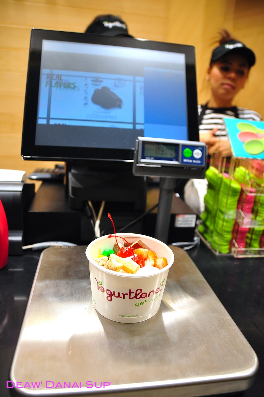 Yogurt land 015