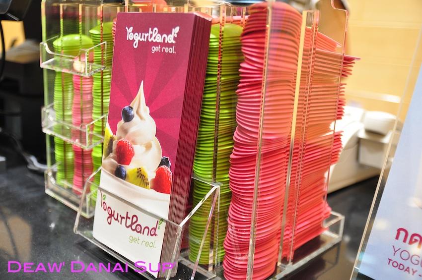Yogurtland 002